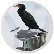 Not Birds Of A Feather Round Beach Towel