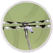 Dragonfly - Not Wilbur's And Orville's Idea Was It Round Beach Towel