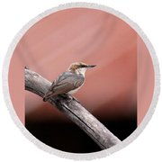 Nuthatch - Bird - Barn Roof Round Beach Towel