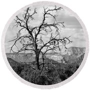 Oak Creek Tree Round Beach Towel