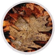 Oak Leaf 1 Round Beach Towel