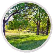 Oak Trees In The Spring Round Beach Towel