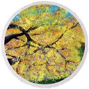 October Fall Foliage Round Beach Towel