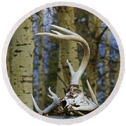 Old Skull And Antlers Round Beach Towel
