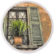 Old Window And A Green Plant Round Beach Towel