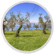 olive grove on Lake Gardan Round Beach Towel