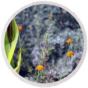 Olive Trees In The Background Round Beach Towel