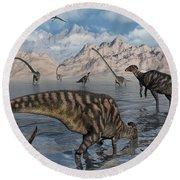 Omeisaurus And Parasaurolphus Dinosaurs Round Beach Towel