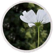 One Wildflower Round Beach Towel