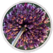 Onion Flower Round Beach Towel