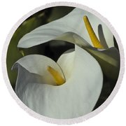 Open White Calla Lily Round Beach Towel