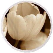 Opening Tulip Flower Sepia Monochrome Round Beach Towel