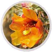 Orange And Yellow Cactus Flower Round Beach Towel