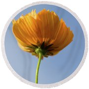 Orange Cosmos Too Round Beach Towel