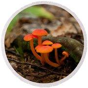 Orange Mushrooms Round Beach Towel