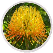 Orange Protea Flower Art Round Beach Towel