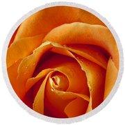 Orange Rose Close Up Round Beach Towel by Garry Gay