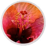 Orange Sherbert Hibiscus Round Beach Towel