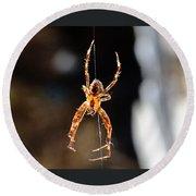 Orange Spider Round Beach Towel