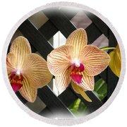 Orange Striped Orchids Round Beach Towel