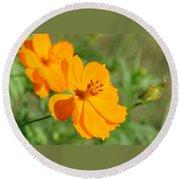 Orange Wildflower Round Beach Towel