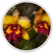 Orchid - Cattleya - Dripping With Passion  Round Beach Towel
