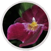 Orchid 252 Round Beach Towel