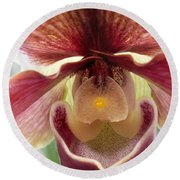Orchid Interior Round Beach Towel