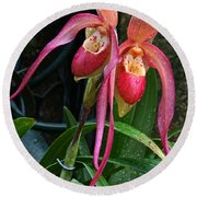 Orchid Mysteries Round Beach Towel