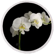 Orchid On Black Round Beach Towel