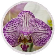 Orchid Originality Round Beach Towel