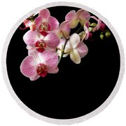Orchids 1 Round Beach Towel