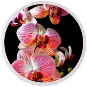 Orchids 2 Round Beach Towel
