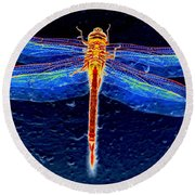 Ornate Odonata Round Beach Towel