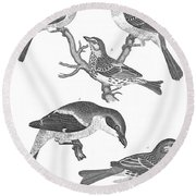 Ornithology, 19th Century Round Beach Towel