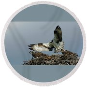 Osprey 2 Round Beach Towel