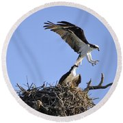 Osprey Coming In For A Landing Round Beach Towel