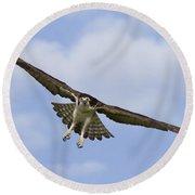 Osprey In Flight Two Round Beach Towel