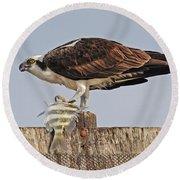 Osprey With Catch Round Beach Towel