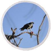 Osprey With Catch I Round Beach Towel
