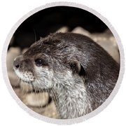 Otter Round Beach Towel