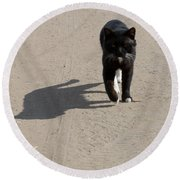 Owner Round Beach Towel by Michael Goyberg