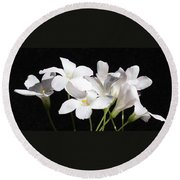 Oxalis Flowers 2 Round Beach Towel