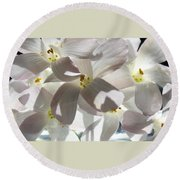 Oxalis Flowers Round Beach Towel