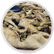 Oysters Galore Round Beach Towel