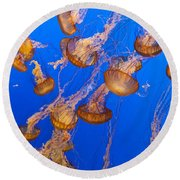 Pack Of Jelly Fish Round Beach Towel