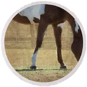 Paint Horse Round Beach Towel