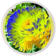 Painted Chrysanthemums Round Beach Towel