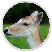 Painted Deer Round Beach Towel