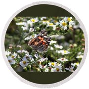 Painted Lady - Surrounded In White Round Beach Towel